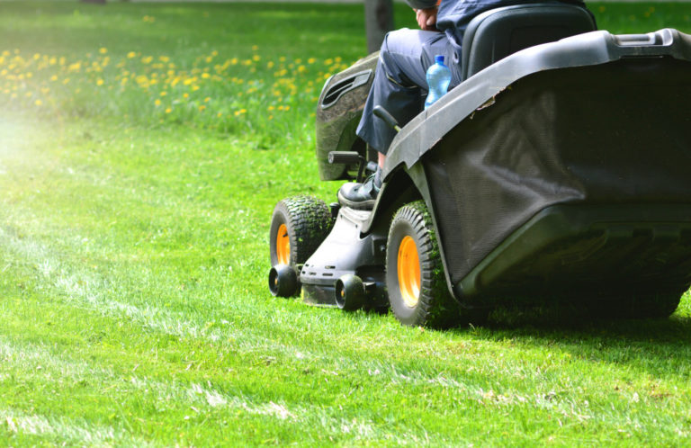 lawn details